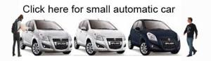 bali small auto car